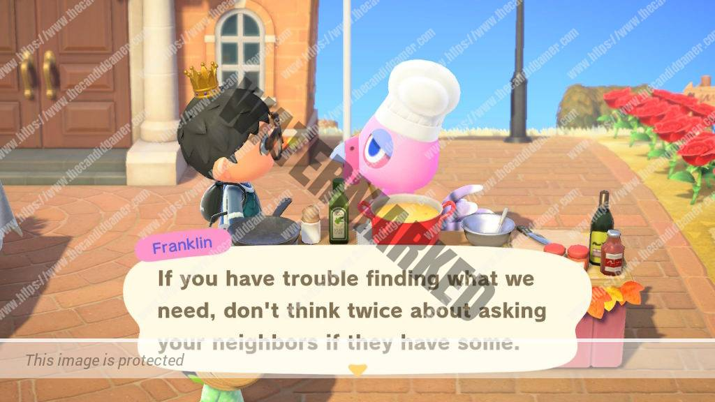 Franklin advising the player to ask their neighbors if they can't find the needed ingredients for a dish.