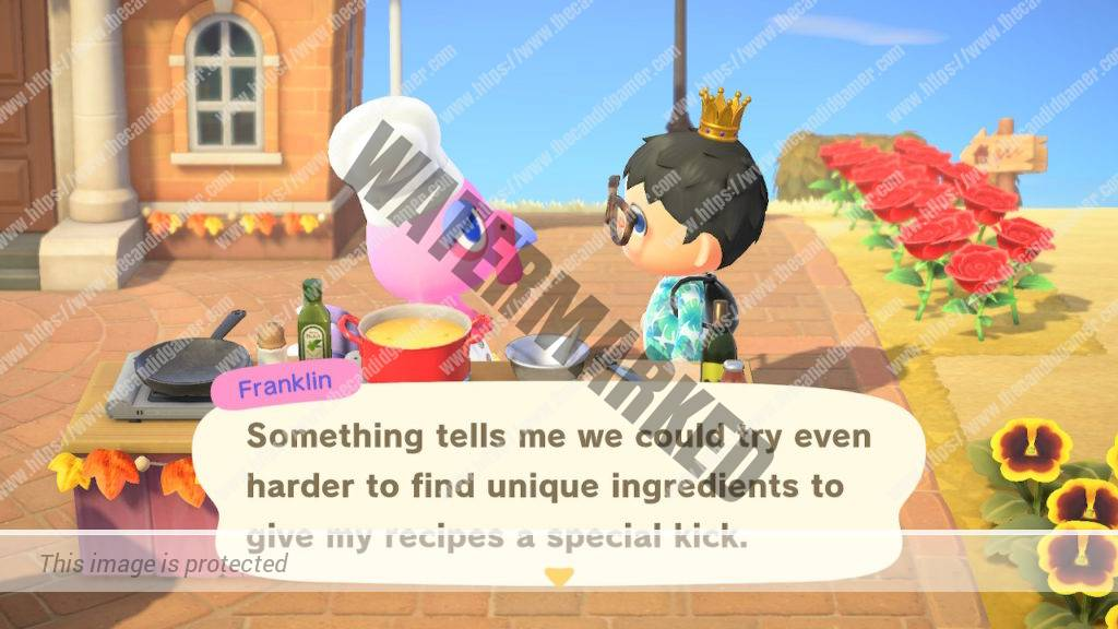 Franklin hinting to the player that their existing dishes can be inmproved with certain ingredients.